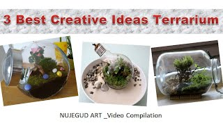 3 Best Creative Ideas  Terrarium Build
