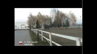 Stajnia Wilczyce - Hubertus 13.11.2011 - Ujeżdżenie