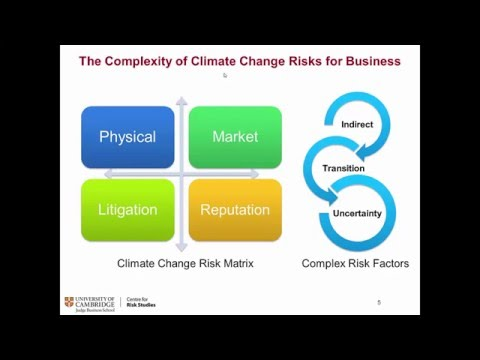 Climate change and investor sentiment shock