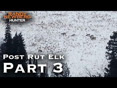 2018 Montana Post Rut Elk Hunt With Randy Newberg (Part 3)
