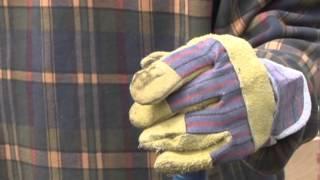 Випробуй на собі - приют для бездомных животных Друг