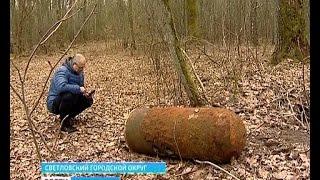 В лесу под Светлым обнаружили  авиационную бомбу времен Второй мировой