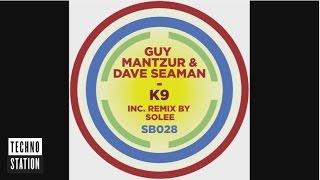 Guy Mantzur & Dave Seaman - K9
