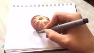 Процесс рисования нектарина | nectarine drawing process