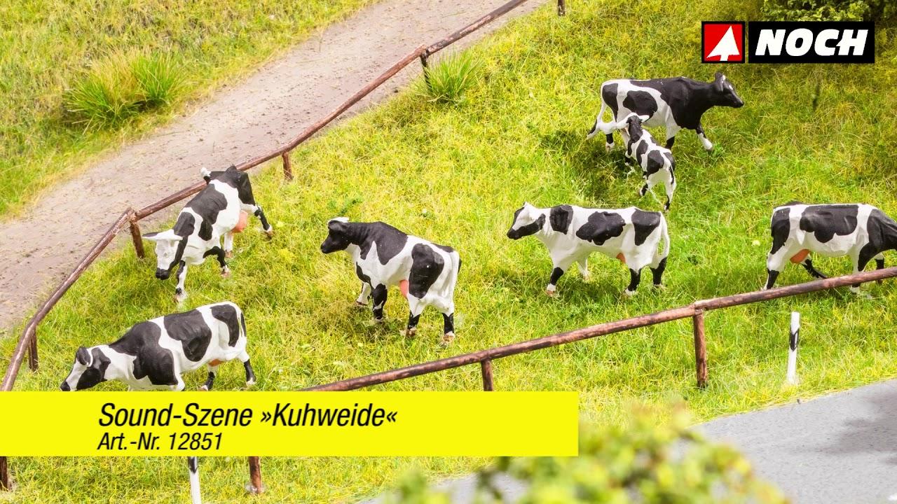 Noch 12851 HO Cow Pasture