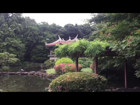 Garden of Words in Real Life - Shinjuku Gyoen