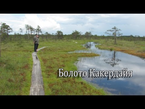 знакомство по эстонии