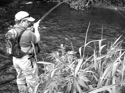 Fly Fishing Europe