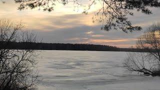 Зимняя природа | Winter nature // Релакс домашний фон // Красивая природа // Природа в Подмосковье