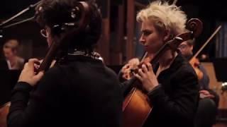Drosera (orchestral work) by Héloïse Lefebvre