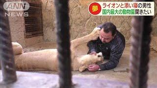 猛獣に寄り添う男性の夢は・・・シリア最大の動物園(19/11/20)