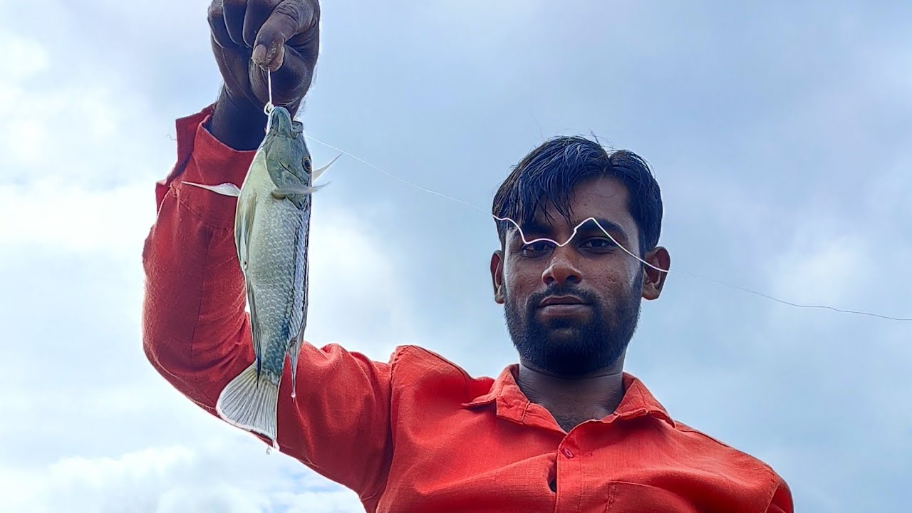 New Fish Hunting video Tilapi katla sparnas....🐋🐬🐟