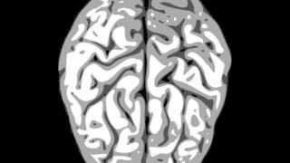 Long Term Memory Stimulation Binaural Beat (1HR) (HQ)