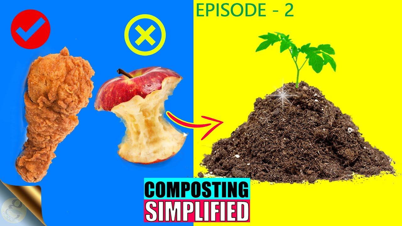 EPISODE 2: COMPOSTING MATERIALS - WHAT TO ADD AND AVOID IN COMPOST BIN   CN Ratio
