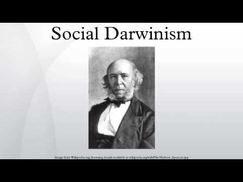 The meaning of social darwinism?