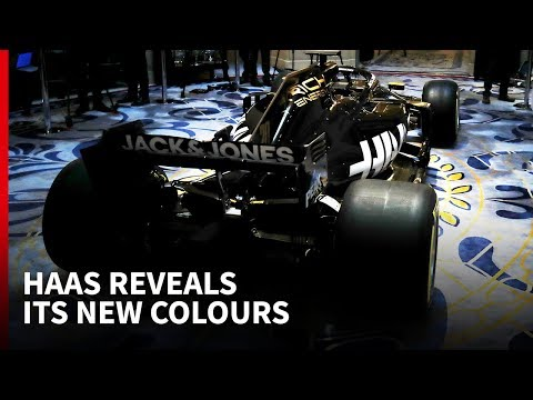 Haas 2019 F1 livery launch