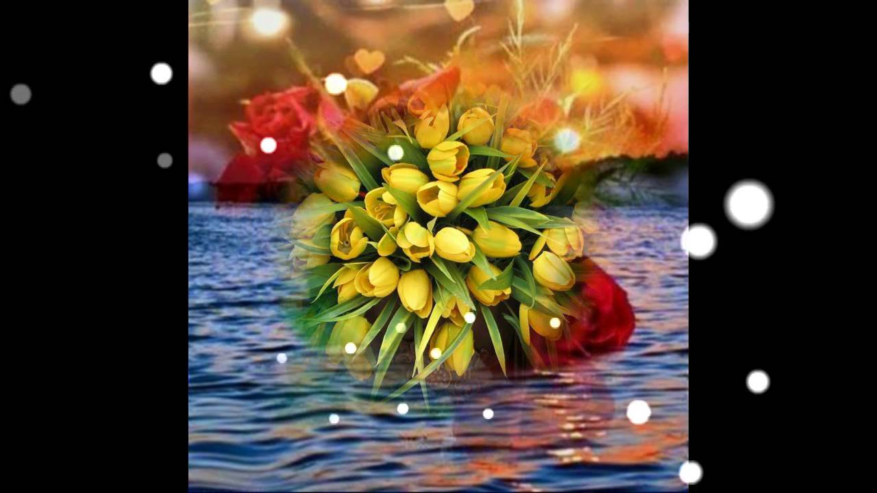 Good morning flowers for yougood morning wishesgreetingssms good morning flowers for yougood morning wishesgreetingssmssayingsquotese cardwhatsapp video youtube m4hsunfo
