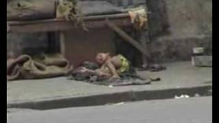 La locura de Calcuta. Vídeo Sin hogar
