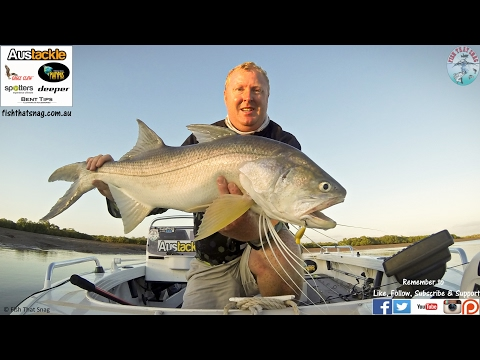 Hunting King Threadfin Salmon - Fishing