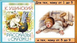 Умный медведь.  Трусливый Ваня.  Леший. - 3-я часть книги. (К. Ушинский) - читает бабушка Лида