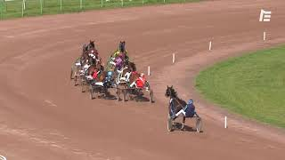 Vidéo de la course PMU PRIX DE TARGET