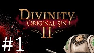 Divinity Original Sin 2 Cleric Part 1 Let S Play Divinity Original Sin 2