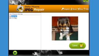 Stellar Phoenix JPEG Repair quick demo