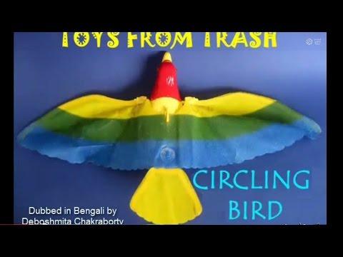 Circling Bird | Bhojpuri | Flying Round and Round