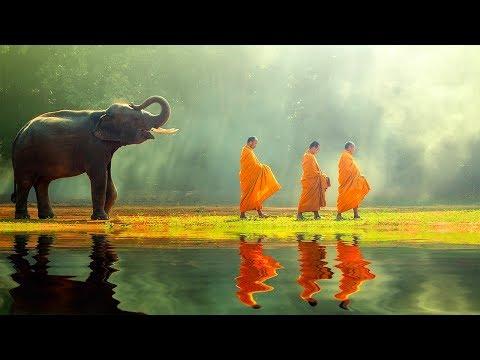 Tibetan Meditation Music 24/7, Relaxing Music, Healing, Sleep, Chakra, Yoga, Zen, Meditation, Study