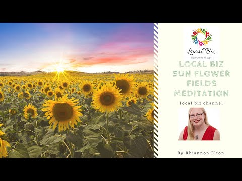 Local Biz Channel Sunflower Meditation
