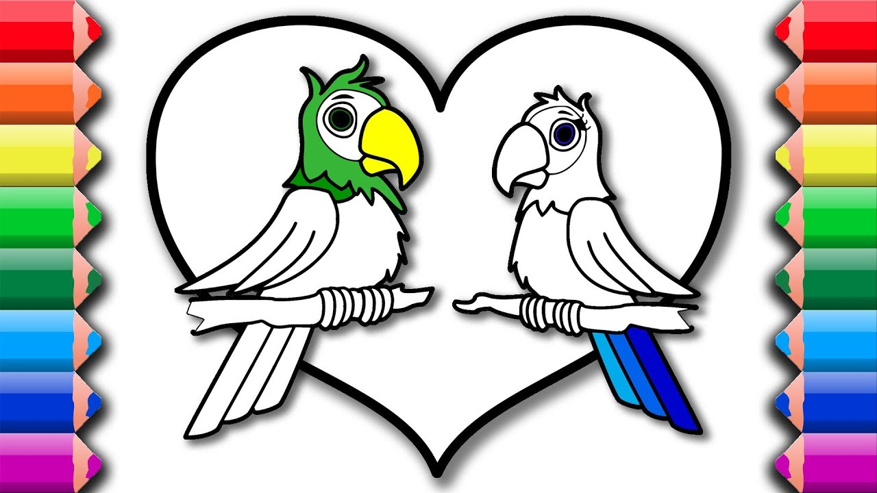 How to draw parrot couple in love   Drawing and coloring pages for ...