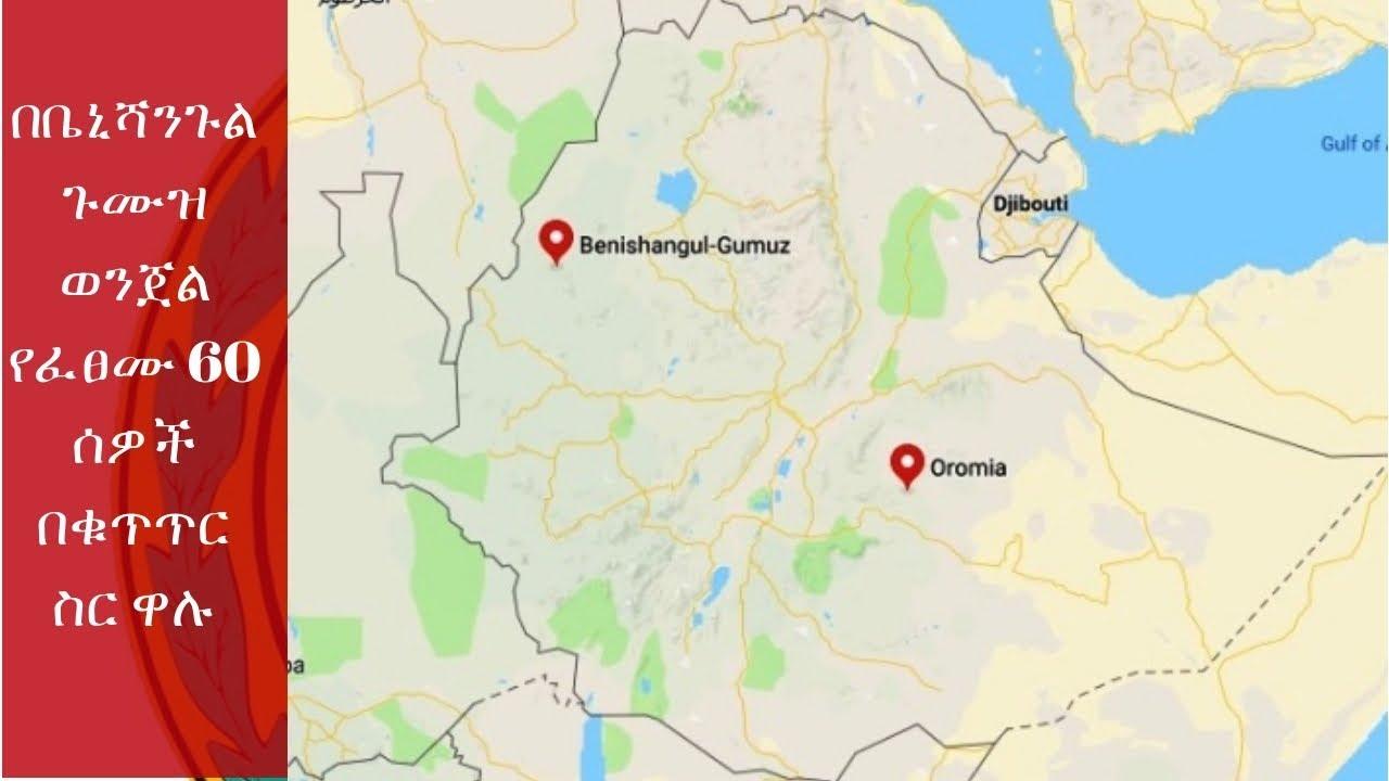 60 people arrested in Benishangul Gumuz crime