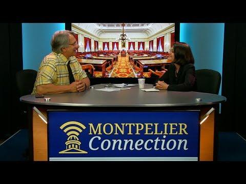 Montpelier Connection: Sen Becca Balint 6/9/17