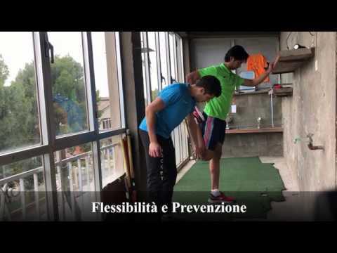 ATTIVITA' E PREPARAZIONE: STRETCHING. CON STEFANO MUSCELLA