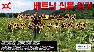 베트남 신문읽기 - 한국의 베트남 노동자 : 실직 및 …