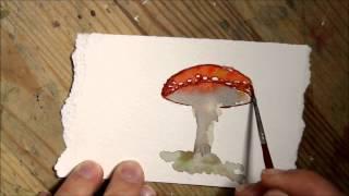 Watercolor Mushroom ACEO - amanita muscara