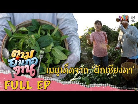 เมนูแสนอร่อยจาก ผักเชียงดา - Full - วันที่ 18 Jan 2020