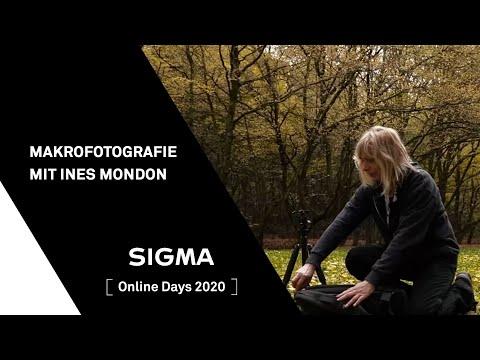 Makrofotografie mit Ines Mondon