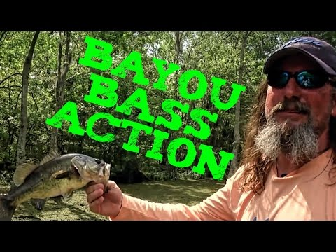 Stephensville's Bass Hot Spots On Castin' Cajun