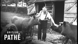 Agricultural Holiday Camp -Trailer (1947)