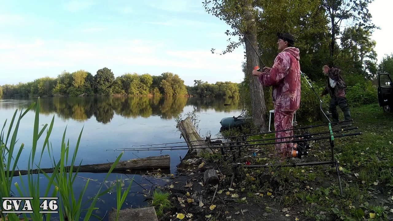 Ловля карпа в Курской области . Конец сезона 2016