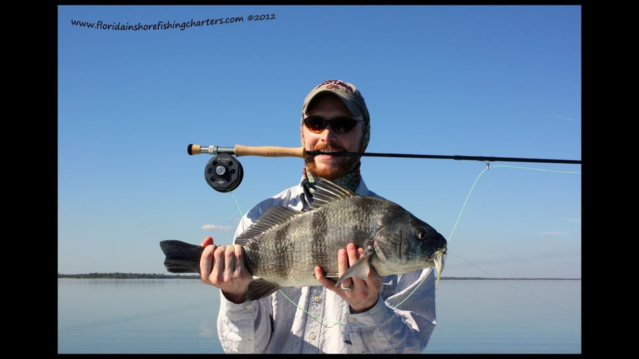 Mosquito lagoon fly fishing guide redfish trout black drum for Salt water fly fishing