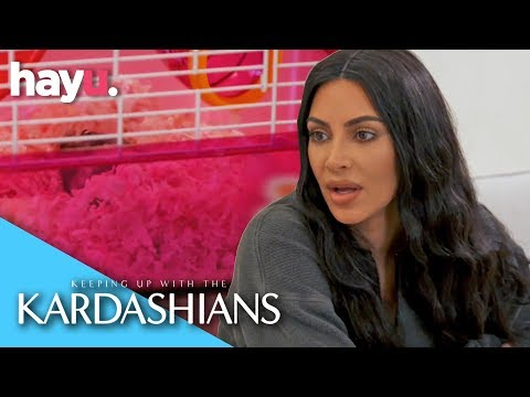 North West Doesn't Know Her Hamster Passed Away | Season 16 | Keeping Up With The Kardashians