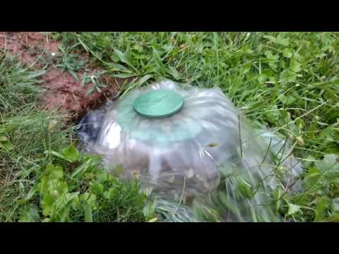 Water pouring out of an NDS pop-up emitter Yard drain