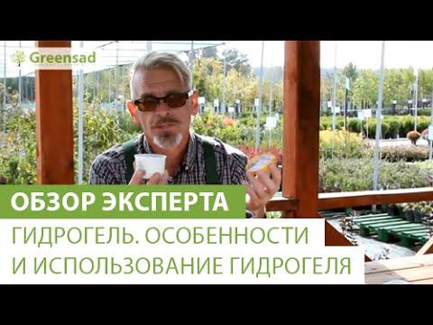 iPhone X за 700 рублей!из YouTube · С высокой четкостью · Длительность: 5 мин12 с  · Просмотры: более 1.202.000 · отправлено: 03.02.2016 · кем отправлено: Anarik Narik