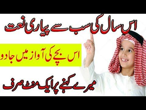 New Best Naat - Danish F Dar - Dawar Farooq Lailahaillallah -hasbi rabbi - Shina Vlog