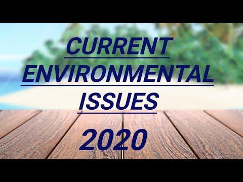 Current Environmental Issues/Environmental Crisis 2020/Current Environmental Changes