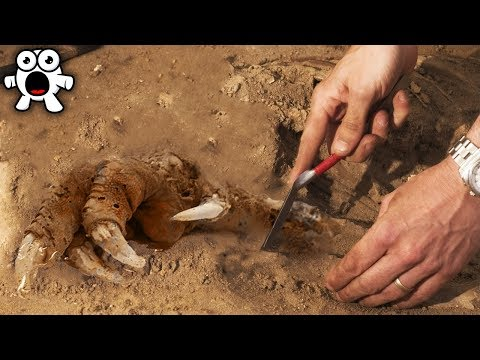 Top 10 Scariest Archaeological Discoveries Ever Found