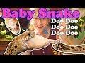 Baby Snake Update! (Bullsnakes, Hognoses, Scaleless rat/corns)