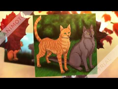 See You Again ~ Warriors ~ Firestar &...